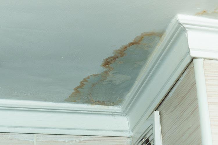 Daklekkage in Deventer, wanneer u er snel bij bent kunt ernstige waterschade of andere problemen aan uw dak voorkomen.